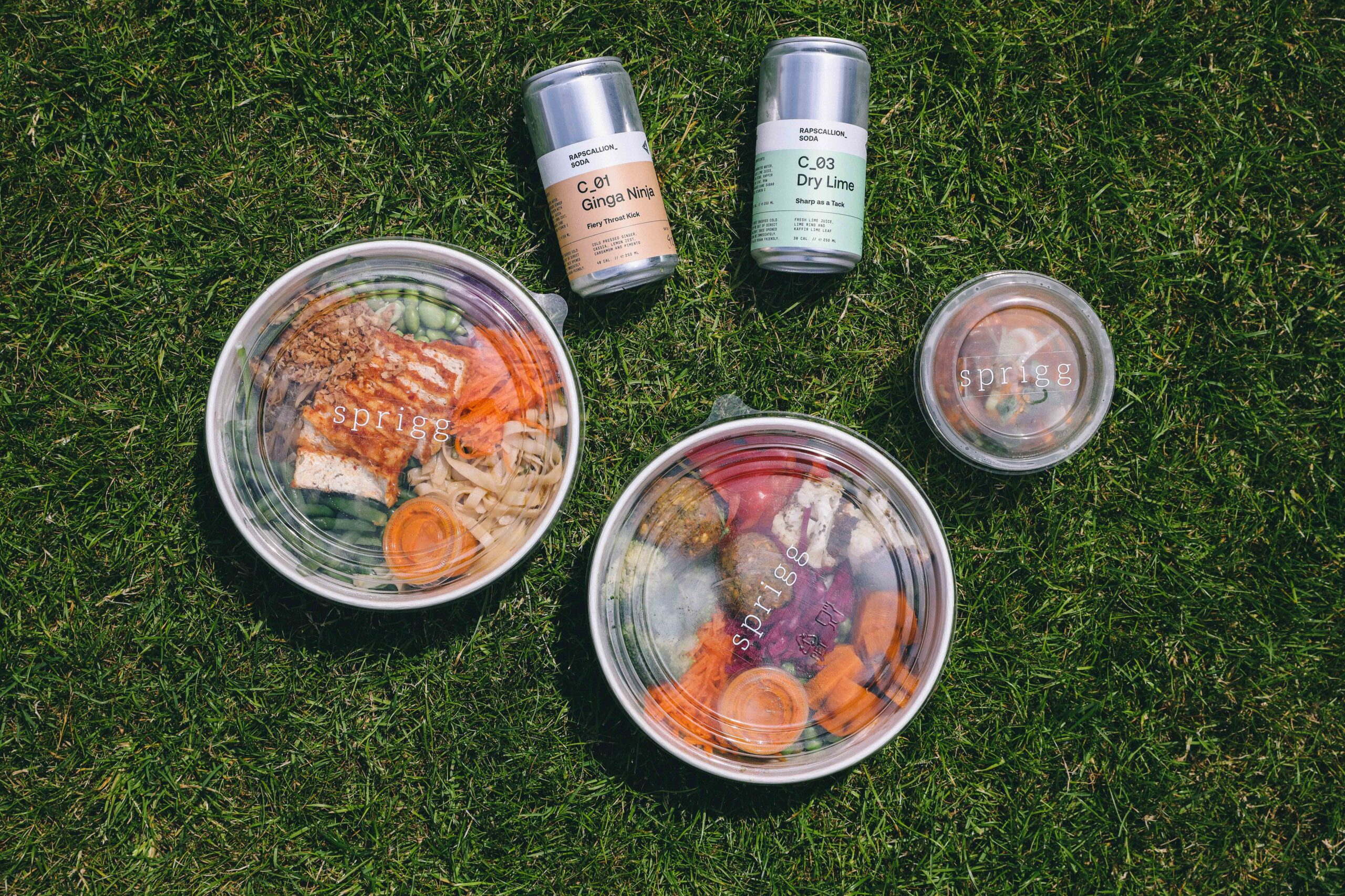 two lunch salad bowls with two cans of juice on grass